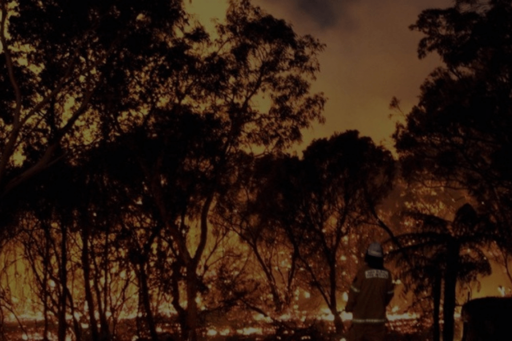 Door considerations in bushfire prone areas. Are you up to speed on your home's requirements?